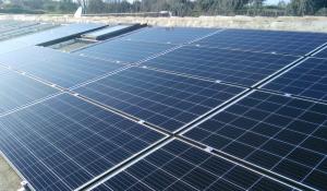 fotovoltaico-torre-di-palme